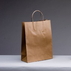 No.350 Brown Kraft Paper Bag With Twist Handle