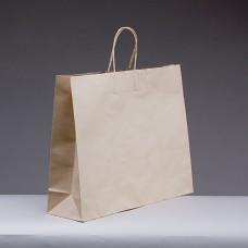 No.400 Brown Kraft Paper Bag With Twist Handle